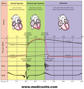 Cardiac Cycle with ECG